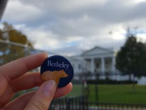 photo of Berkeley Bear button with White House in background