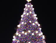 The beauty of the National Christmas tree against the night sky truly takes your breath away.