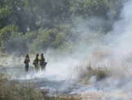 A fire crew keeps an eye on the training burn as it moves through a field of starthistle.