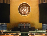 The author at the United Nations